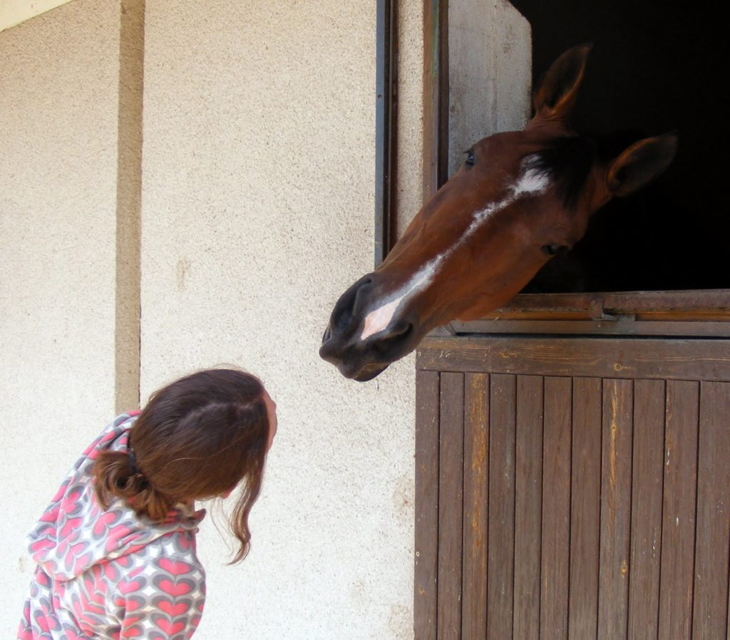 Ecole Nationale d'Equitation Le Cadre Noir