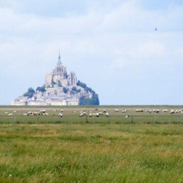 dzień 20 – Tour de France, Mortain i straszna góra